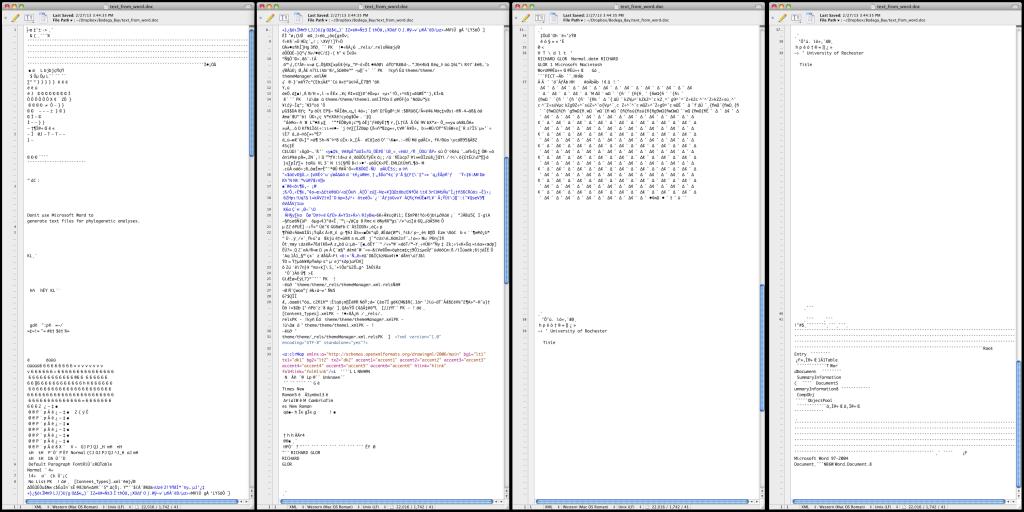 microsoft_formatting