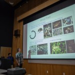 Christoph Liedtke and Cesar Herrera's talk on toad time trees.