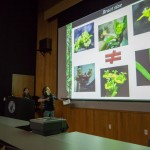 Judy Wexler and Anaëlle Soulebeau on correlated trait evolution in malagasy euphorbia.
